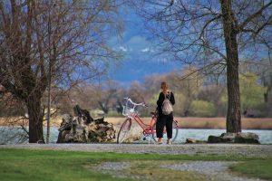 עמק הווכאו   טיול אופניים חשמליים וטעימות יין